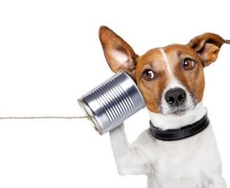 Communicate-Effectively