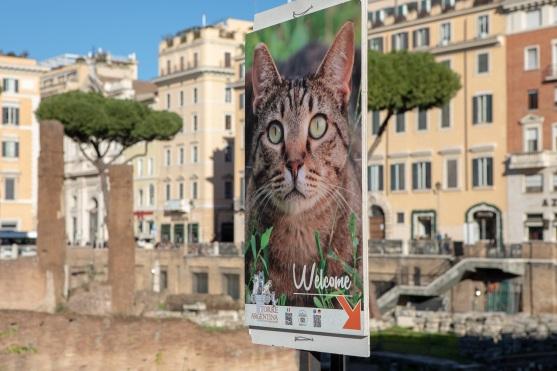 Rome-CS1
