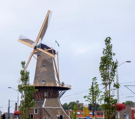 TL 3 windmill