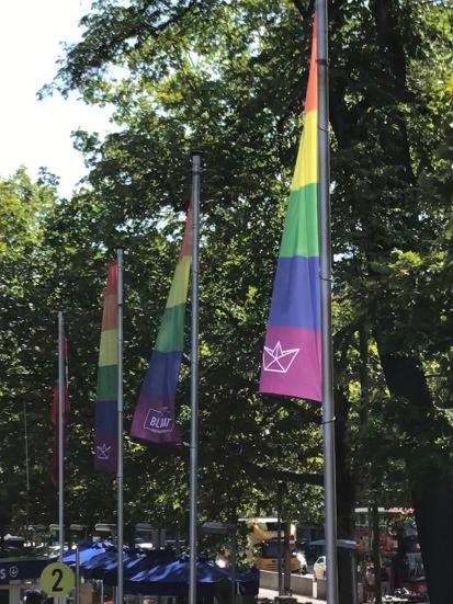 AA 5-pride flag